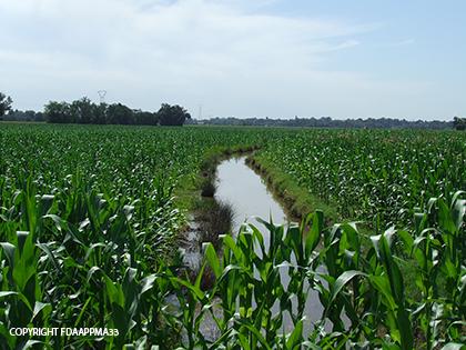 intensification de l'agriculture1