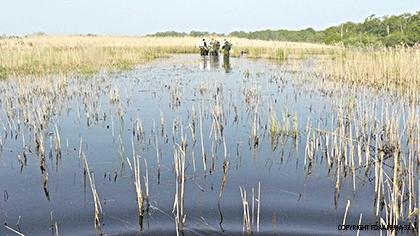 légende-pêche-électrique-en-zone-de-marais