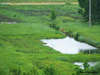 legende-plan-d'eau-(2)